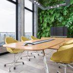 グリーンのあるミーティングルーム